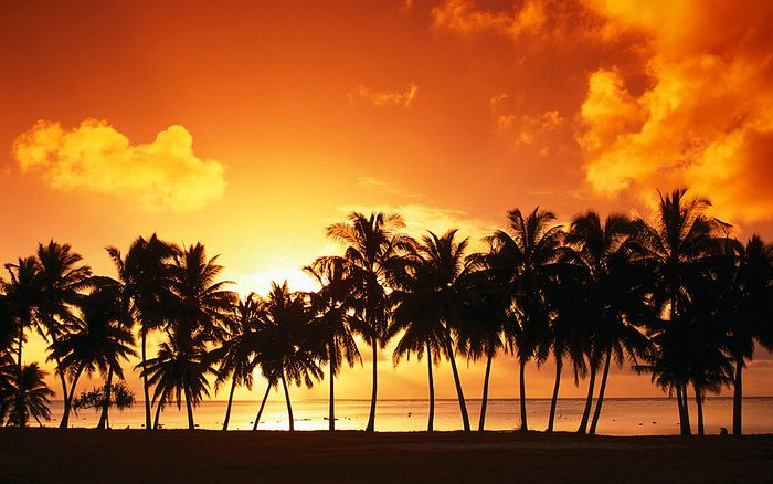 HDTV Widescreen Wallpapers of Beaitiful Nature (Vol.4) - Sunset Beach - HDTV