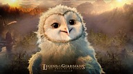 Legend of the Guardians: The Owls of Ga''Hoole (2010)11 pics
