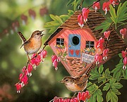Pretty Songbirds - Gorgeous Birds Paintings by Janene Grende 13 pics