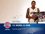 NBA : 2008-09 Detroit Pistons Players16 pics